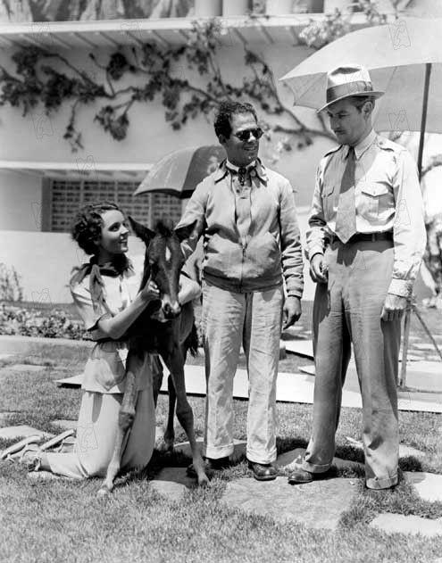 Jane Wyatt,Frank Capra,Ronald Colman Lost Horizon