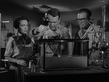 Nancy Davis, Lew Ayres,Gene Evans